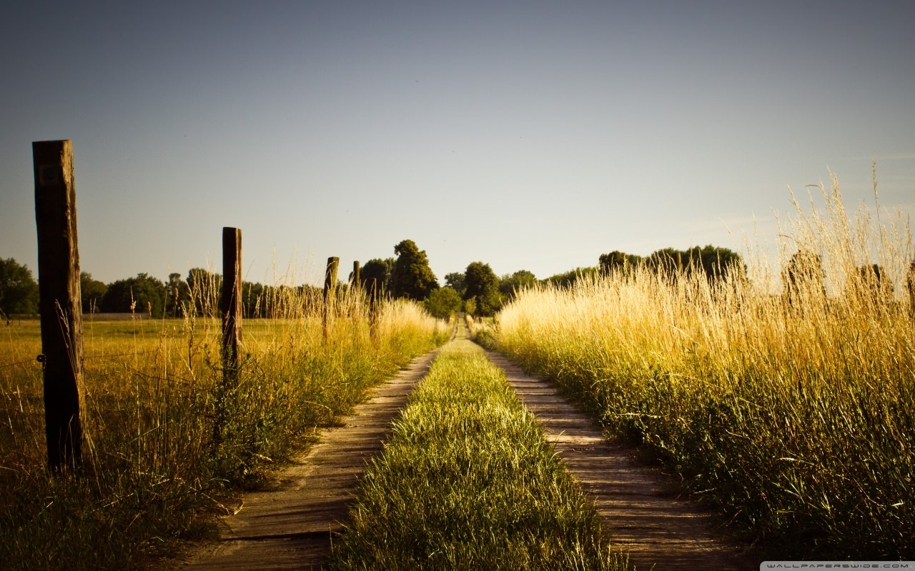 country_road_late_summer-wallpaper-1280x800